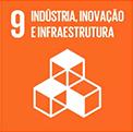 Indústria, Inovação infraestrutura